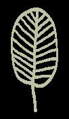 NHHC-Leaf